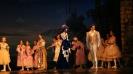 костюмы для балета