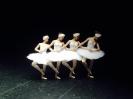 танец маленьких лебедей,жизнь наших работ