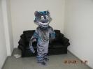 Кот чеширский ростовой костюм