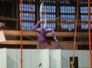 воздушное акробатическое шоу